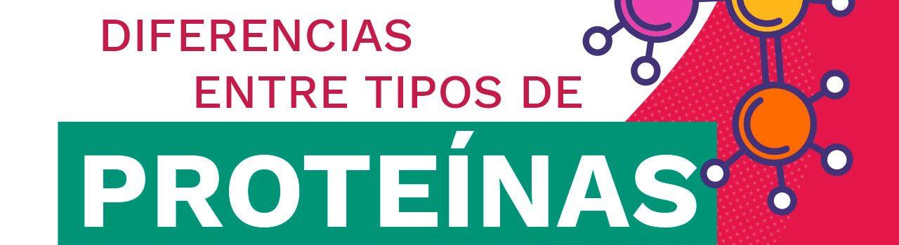 Portadas_Blog_DiferneciasProteinas
